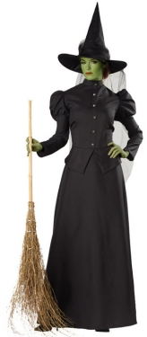 Victorian Costumes: Dresses, Saloon Girls, Southern Belle, Witch Womens Witch Costume $75.97 AT vintagedancer.com